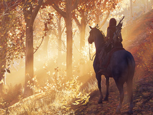 form, game, Horse, forest, rider, Assassins Creed Odyssey